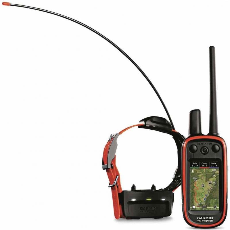Koera GPS Alpha 100+rihm TT15