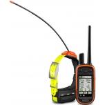 Koera GPS Alpha 100+rihm T5