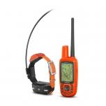 Koera GPS Alpha 50+rihm T5